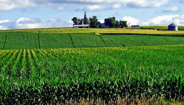 Immigration Bail Bonds Iowa